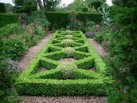 image: Ornamental box hedges in Cothay Manor gardens